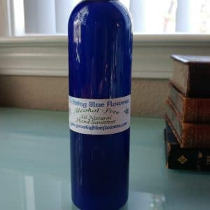 Alcohol Free Sanitizer Large Bottle