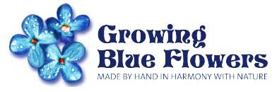 Growing Blue Flowers
